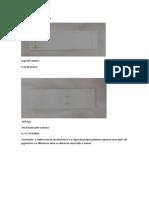 PEDRO AGULLERIO CASAIS Separacion de Pigmentos