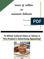 culture & consumer behaviour.ppt