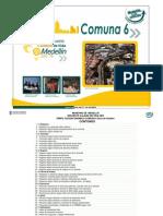 Encuesta Calidad de Vida 2005 - Perfil Comuna 6