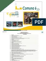 Encuesta Calidad de Vida 2007 - Perfil Comuna 6