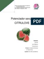 Informe_Proyecto_Citrulove_1_