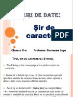 Sir de Caractere