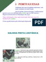 RAÇAS de galinhas portuguesas
