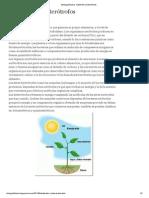 Biologia2ºLetras_ Autótrofos y heterótrofos