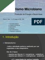 1129_Metabolismo microbiano