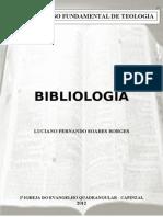 82353863-BIBLIOLOGIA