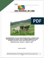 Informe Final Perfil. Cañete-Yauyos