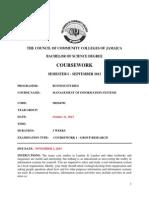 MIS Group Course Work.pdf