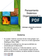 20130101 Pensamiento sistémico 1 Res