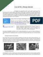 Hongos-nematofagos PDF (1)