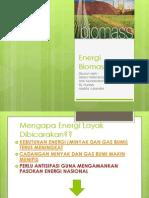 Energi Biomassa (Renew)