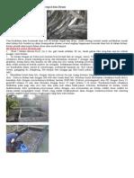 Berternak Ikan lele di kolam Terpal dan Drum.doc