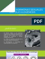 Efecto de hormonas sexuales en ovogénesis