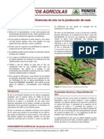 ZINC_DEFICIENCIAS_ARTICULO