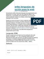 Los diferentes lenguajes de programación para la web