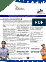 Informativo especial sobre medidas pro empleabilidad juvenil