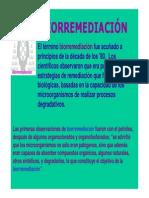 biorremediacion-130629191535-phpapp01