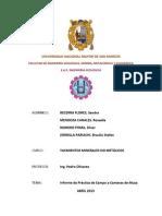 informe no metálicos 1.docx