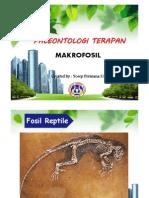 Persentasi Paleontologi 1.pdf