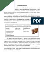motivatiile_calatoriei.pdf