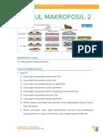 Modul 2 Proses Pemfosilan.doc