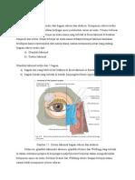 bab 1 anatomi dan fisiologi sistem lakrimal