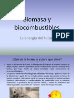 CLASE 1 BIOCOMBUSTIBLES.pptx