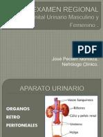 6. Semiologia Region Lumbar