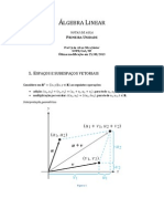 Álgebra Linear - Notas de aula - Primeira unidade
