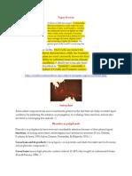 Special study 1.docx