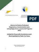 informefinalapfa (2)