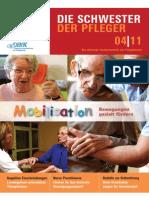 Die Schwester - Der Pfleger Nr. 04.2011
