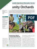 community_orchards.pdf