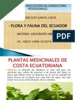 Flora y Fauna Para Grabar