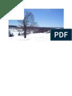 snow.pdf