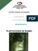 Bambu_1_-_Generalidades_ELW