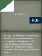 A Cultura III