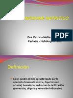 S Nefrítico 2013