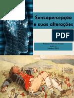 Aula 16 - Sensopercepção e suas alterações