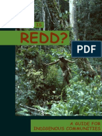 Iwgia What is Redd