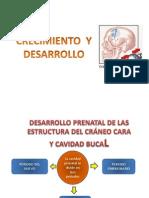 crecimiento y desarrollo.pptx