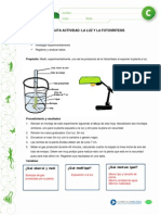 experimento fotosíntesis