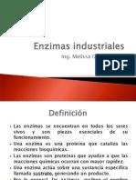 Enzimas Industriales (1)