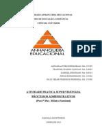 ATPS Processos Administrativos 2013 Pronta