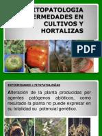 Clase enfermedades.pdf