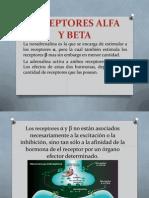 Receptores Alfa y Beta