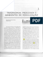 Cap. 3 - Tafonomia - Paleontologia