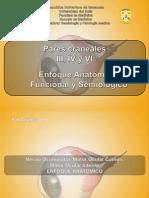 diapositiva nervios