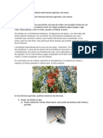 Informe sobre técnicas agrícolas y de crianza