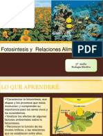 3º fotosintesis